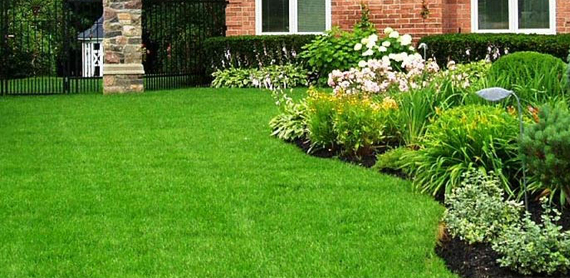 Lawn Care Hartford VT