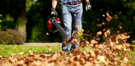 Leaf Removal West Lebanon NH